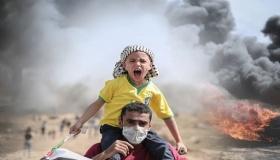 La rinascita della questione palestinese